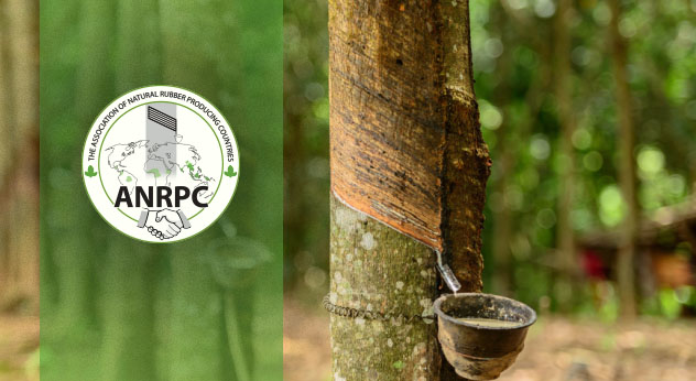 ANRPC again revises natural rubber outlook