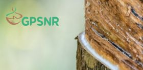 Copy of GPSNR-tapping_i.jpg